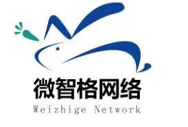 南京微智格网络智能科技有限公司